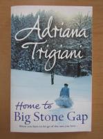 Adriana Trigiani - Home to Big Stone Gap