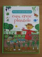 Anticariat: Felicity Brooks - Prima mea carte despre cum cresc plantele
