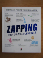 Anticariat: Isabelle Fougere - Zapping prin cultura generala