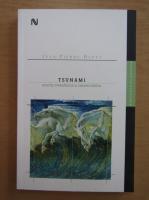 Jean Pierre Dupuy - Tsunami. Scurta metafizica a catastrofelor