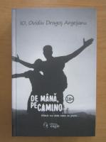 Anticariat: Ovidiu Dragos Argesanu - De mana, pe Camino