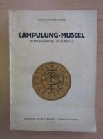 Ioan Rautescu - Campulung-Muscel. Monografie istorica