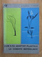 Anticariat: N. Hurduc - Cum s-au adaptat plantele la conditii de viata neprielnice