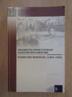 Andreea Andreescu - Minoritati etnoculturale, marturii documentare. Evreii din Romania