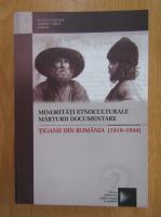 Lucian Nastasa - Minoritati etnoculturale, marturii documentare. Tiganii din Romania