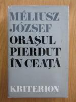 Meliusz Jozsef - Orasul pierdut in ceata