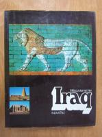 Anticariat: Mesopotamie hier Iraq aujourd'hui