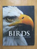Paul D. Frost - Birds