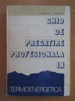 Anticariat: Paul Bocanete - Ghid de pregatire profesionala in termoenergetica