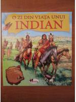 O zi din viata unui indian