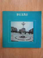 Anticariat: Ion Miclea - Buzau