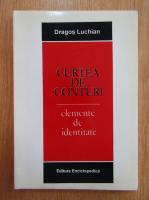 Dragos Luchian - Curtea de conturi. Elemente de identitate
