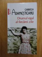 Anticariat: Gabriela Adamesteanu - Drumul egal al fiecarei zile