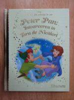 Anticariat: Peter Pan. Intoarcerea in Tara de Nicaieri