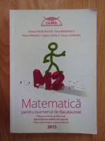 Marian Andronache - Matematica pentru examenul de bacalaureat