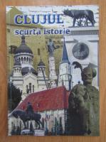 Camil Muresanu - Clujul. Scurta istorie