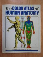 Vanio Vannini, Giuliano Pogliani - The Color Atlas of Human Anatomy