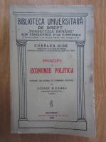 Alexandru George - Principii de economie politica