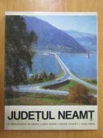 Anticariat: Radu Carneci - Judetul Neamt