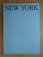 Sandu Mendrea - New York