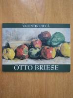 Valentin Ciuca - Otto Briese