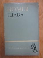 Homer - Iliada (volumul 2)