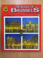 Anticariat: The Whole of Brussels and Its Surroundings