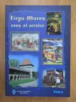 Targu Mures, oras al artelor