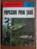 Anticariat: Victor Tufescu - Popasuri prin tara