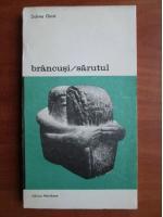 Anticariat: Sidney Geist - Brancusi. Sarutul