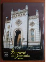 Aristide Streja - Sinagogi din Romania
