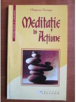 Chogyam Trungpa - Meditatie in actiune