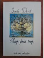 Anticariat: Sandu David - Timp fara trup