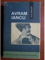 Anticariat: Silviu Dragomir - Avram Iancu