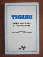 Anticariat: Elena Zamfir - Tiganii, intre ignorare si ingrijorare