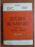 Aron Petric - Istoria Romaniei intre anii 1918-1981
