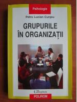 Petru Lucian Curseu - Grupurile in organizatii