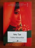 Anticariat: Amy Tan - Valea minunilor