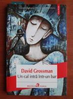Anticariat: David Grossman - Un cal intra intr-un bar