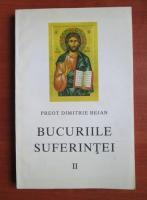 Dimitrie Bejan - Bucuriile suferintei (volumul 2)