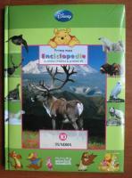 Anticariat: Prima mea enciclopedie. volumul 10, Tundra