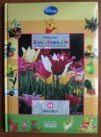 Anticariat: Prima mea enciclopedie. volumul 14, Plantele