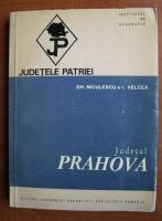 Gh. Niculescu - Prahova (colectia Judetele Patriei)
