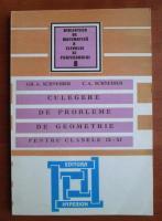 Gh. A. Schneider - Culegere de probleme de geometrie pentru clasele XI-XI