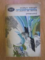 Anticariat: Evelyn Waugh - Un pumn de tarana. Preaiubita
