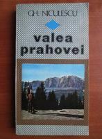 Anticariat: Gh. Niculescu - Valea Prahovei