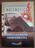 Gheorghe Adalbert Schneider - Matematica. Exercitii si probleme pentru clasa a IX-a