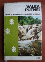 Anticariat: Nicolae St. Mihailescu - Valea Putnei