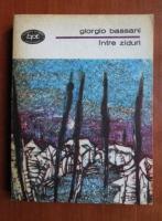 Anticariat: Giorgio Bassani - Intre ziduri
