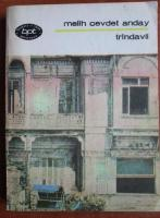 Anticariat: Melih Cevdet Anday - Trandavii
